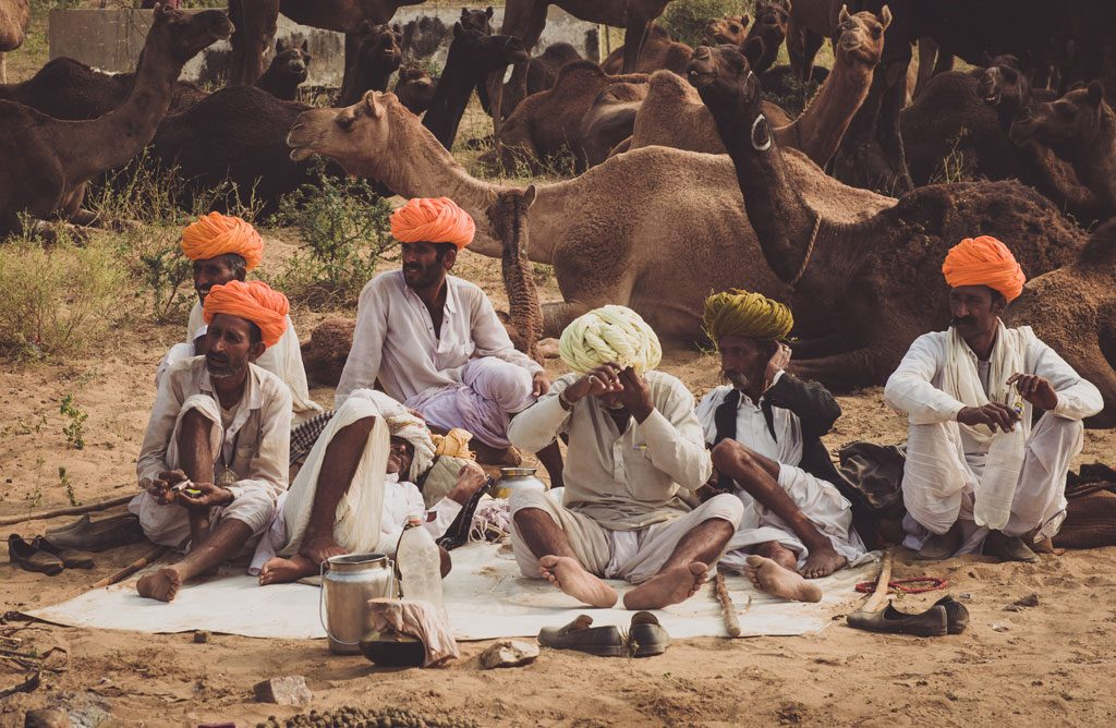 Pushkar Tour & Travel Guide